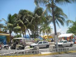 Palm trees and the ocean seen from Avenue Rueda Medina in Isla Mujeres.jpg