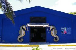 Seahorse sculptures on the blue turtle farm building in Isla Mujeres.jpg