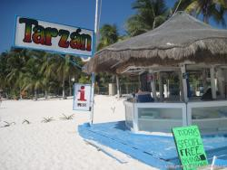 Tarzan bar and cafe area in Playa Norte Isla Mujeres.jpg